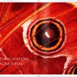 Schermafbeelding 2013-10-15 om 16.35.52